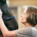 More Spas Offer Equine Therapy   Equine Assisted Learning and Psychotherapy   Scoop.it