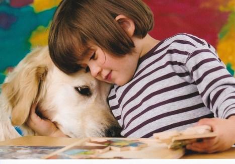 Handicap : des engagements qui ont du chien ! | Innovactions 2.0 | Scoop.it