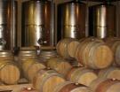 Vin et Minéralité : Vaste champ d'investigation | Grande Passione | Scoop.it