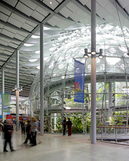 California Academy of Sciences | Arup | A global firm of consulting engineers, designers, planners and project managers | Commercial Real Estate Sustainability Strategies | Scoop.it