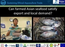 The Sustainable Intensification of Aquaculture in Asia-Pacific | Seafood | Scoop.it