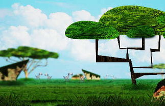 Educación en la Selva | Ciencias | Scoop.it