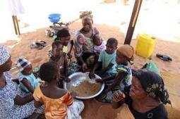 An alarming outlook for Senegal's hungry | Questions de développement ... | Scoop.it