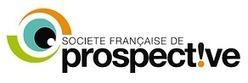Printemps de la Prospective 3 : la simplexité | prospective des organisations | Scoop.it