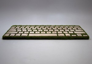 Mother Nature Gave Birth to a Keyboard   All Geeks   Scoop.it