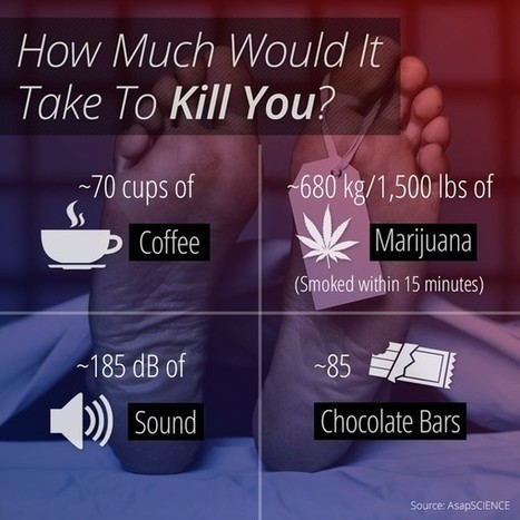 How Much Of These Substances Is Enough To Kill You? | ANALYZING EDUCATIONAL TECHNOLOGY | Scoop.it
