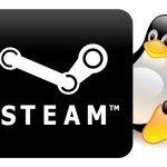 Steam Linux fait débat au sein de la communauté | Ubuntu French Press Review | Scoop.it