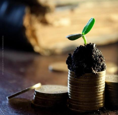 Startup, a luglio investiti quasi 18 milioni di euro | START UP & TAX | Scoop.it