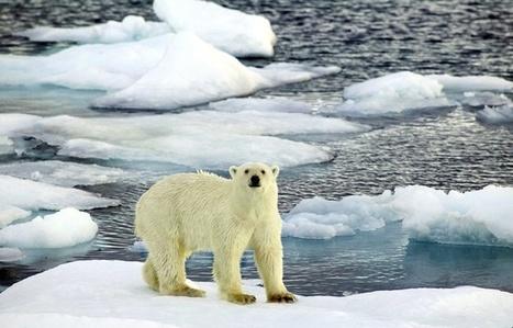 Arctique: La fonte des glaces s'accélère désormais (aussi) en hiver | Développement durable et efficacité énergétique | Scoop.it