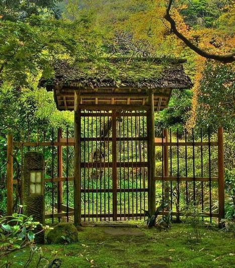 "MB Photo Channel on Twitter: ""Entrance gate of Japanese garden in Kamakura http://t.co/dcHspIY3sf"" | My Japanese Garden | Scoop.it"