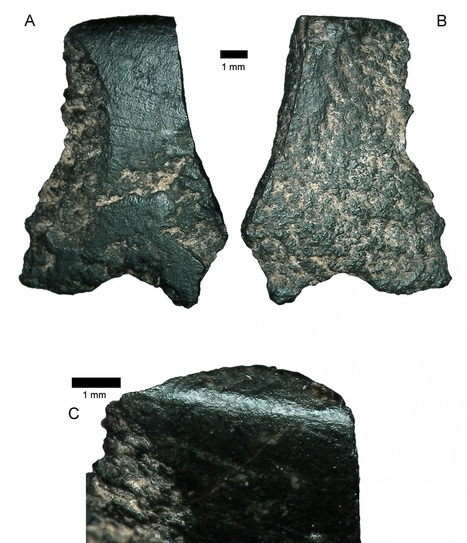 World's oldest axe fragment found in Australia | Heritage Daily | Kiosque du monde : Océanie | Scoop.it