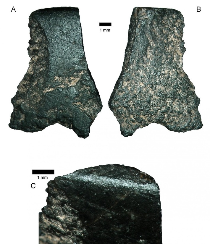 World's oldest axe fragment found in Australia | Heritage Daily | Océanie | Scoop.it