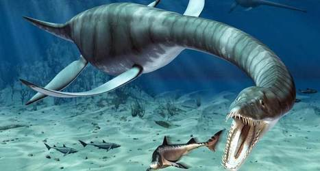 The real sea monsters | NetGeology | Scoop.it