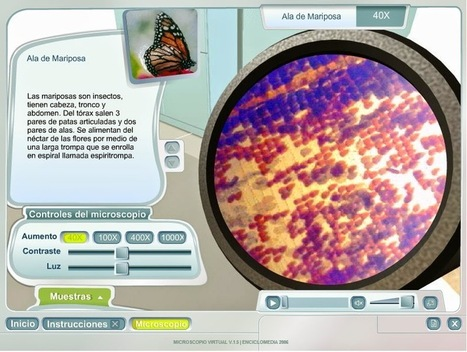 EL MICROSCOPIO: El microscopio virtual e interactivo de Enciclomedia ~ Juegos gratis y Software Educativo | Aprendiendo a Distancia | Scoop.it