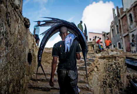 Économie bleue en Afrique (1) : des ressources naturelles très disputées | HALIEUTIQUE ECOLOGIE MARINE | Scoop.it