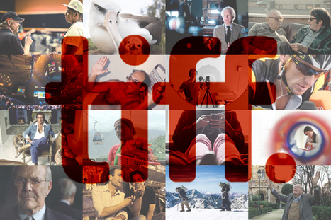 TIFF 2013: The documentary wrap   Documentary Landscapes   Scoop.it