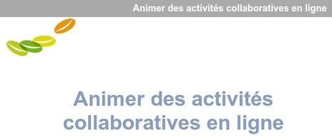 Animer des activités collaboratives en ligne | Ressources et Outils en e-formation | Scoop.it