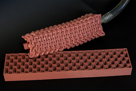 Soft-bodied robots: Actuators inspired by muscle | Robohub | Heron | Scoop.it