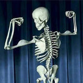 New supplement superior to calcium and vitamin D for bone health | Sustain Our Earth | Scoop.it