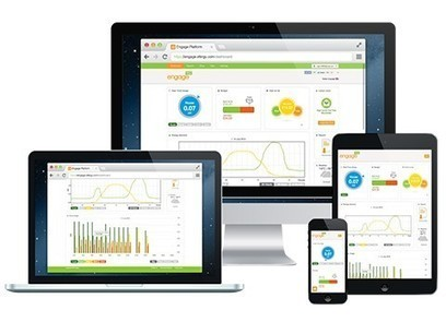Efergy's Power Meters Help Judicious Use of Energy To Save The Environment | Energy Monitors | Scoop.it