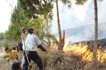 Changement climatique – Madagascar a ratifié l'accord de Paris | Nouveaux comportements & accompagnement aux changements | Scoop.it