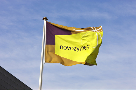 Novozymes to build new enzyme production facility in India | Latest News From Chemical Industry | Scoop.it