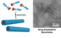 Scientist Studies How to Turn Cancer Drugs Into Their Own Delivery Systems ... - Nanotechnology News (press release) | Nanotechnologie and me | Scoop.it