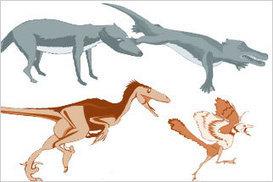 NOVA   Fossil Evidence   Middle School Life Science   Scoop.it