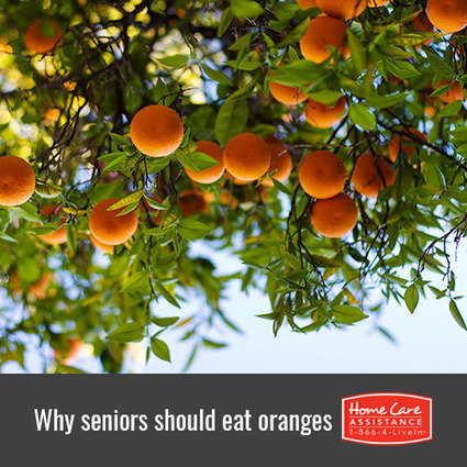 Why Are Oranges Healthy for the Elderly? | Senior Home Care in Phoenix | Scoop.it