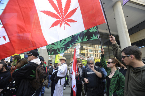 Battle over medical marijuana (Canada) | Alcohol & other drug issues in the media | Scoop.it
