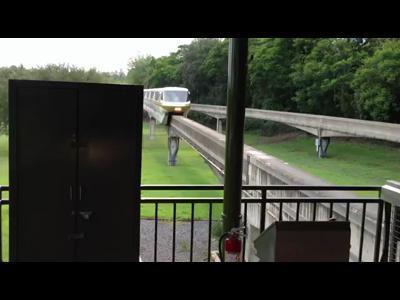 Un écureuil arrête un train à Disney   Strange days indeed...   Scoop.it
