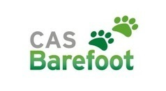The Barefoot Project: primary computing | technologies | Scoop.it