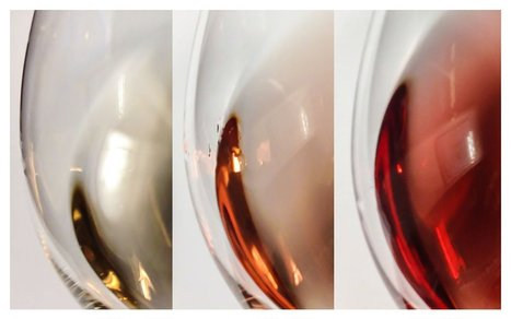 Our 10 Favorite Rosé Wines From Around the World - Parade | Wine Time | Scoop.it