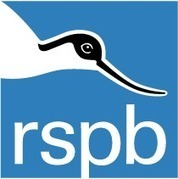 RSPB giving nature a home: pick an activity and get involved | Education | Scoop.it
