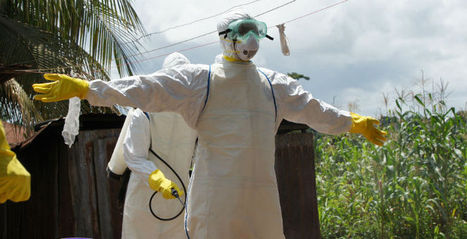 SpecialCollection:Ebola | Virology News | Scoop.it