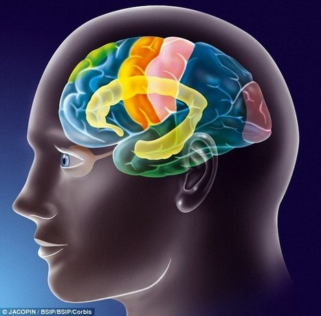 Emotional areas of the teen brain 'shut down' when criticised | Student Leadership | Scoop.it