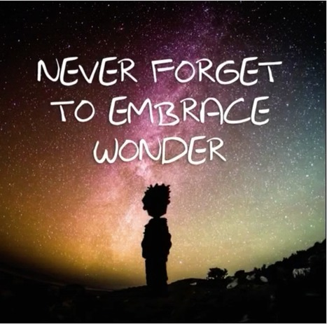 How do we bring wonder back into the classroom? | Informed Teacher Librarianship | Scoop.it