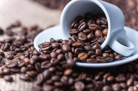 Así es cómo el cambio climático perjudica a la producción de café | Sistemas de Producción II | Scoop.it