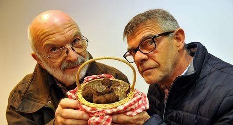 Jean-Marie André : «La truffe a un côté magique» | Actualités du tourisme lotois | Scoop.it