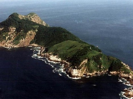 Ilha de Queimada Grande – Brazil's Scary Snake Island | Strange days indeed... | Scoop.it