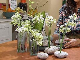 Arreglo floral estilo Zen - por Coco Díaz Castillo | Manualidades, por Coco Díaz Castillo | Scoop.it