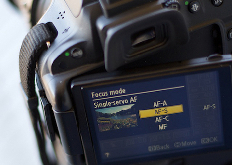 How to Avoid Blurry Photos by Choosing the Right Autofocus Mode | Basic Photography | Scoop.it