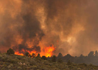 At least 18 firefighters killed battling Arizona wildfire | Annie Haven | Haven Brand | Scoop.it
