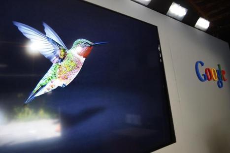 Information about New Google Hummingbird Algorithm - Newz Duniya | Newz Duniya | 24*7 online news | Scoop.it