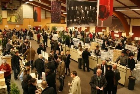 côte-rôtie : Histoires de vins | oenologie en pays viennois | Scoop.it
