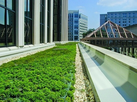 Put a Green Roof On It... | Urban Life | Scoop.it