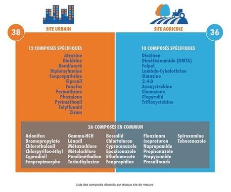 Pesticides dans l'air : quelle différence entre la ville et la campagne ? | décroissance | Scoop.it