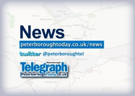Have you seen any examples in Peterborough's of deadly tree disease??? | Peterborough City Council | Scoop.it