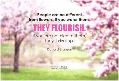 People are no different from flowers | Success | Scoop.it