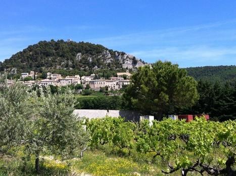 I'm Crazy I drink Rhône Wines (du sud) | Miss Vicky Wine | Veille sur le vin | Scoop.it